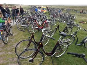Fahrräder ad Domäne Bill